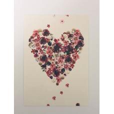 Hjerte kort