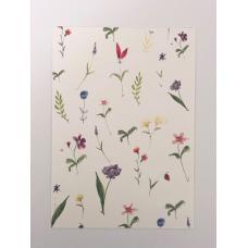 Hvidt blomster kort